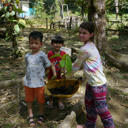 Children preparing to plant a seedling